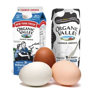 Eggs, Dairy and Milks