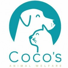 Donation Coco's Animal Welfare