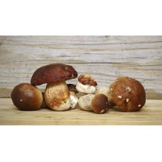 Dehydrated Porcini Mushrooms 100g