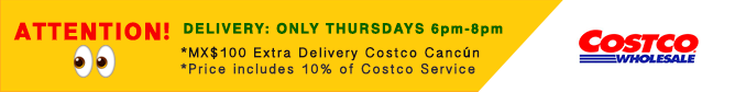 Costco Delivery Details